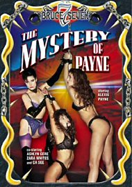 The Mystery Of Payne (108530.10)