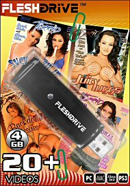 The Best of Torrid Vol.1 on 4gb usb FLESHDRIVE&8482; (111976)