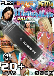 20+ Molly's Life Vol.1 on 4gb usb FLESHDRIVE (115210)