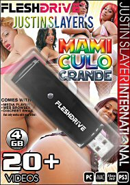 20+ Mami Culo Grande on 4gb usb FLESHDRIVE (115222)
