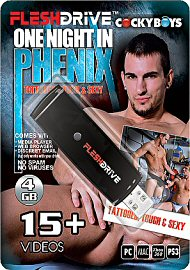 15+ One Night in Phenix Video on 4gb usb FLESHDRIVE (116594)