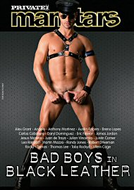 Manstars 12: Bad Boys In Black Leather (129272.26)