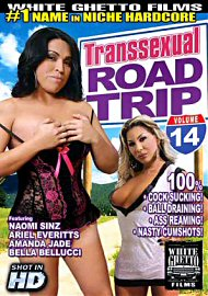 Transsexual Road Trip #14 (133208.25)
