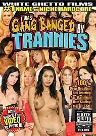 I Was A Gang Banged By Trannies (135411.6)
