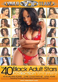 Top 40 Black Adult Stars Collection 2 (2 Dvd Set) (140356.200)