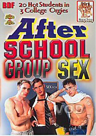 After School Group Sex (146274.100)