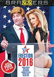 Zz Erection 2016 (2017) (148800.9998)