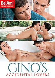 Gino'S Accidental Lovers (2017) (152950.0)