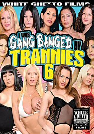 I Was Gang Banged By Trannies 6 (2017) (153475.9999)