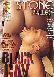 Stone Valley - Black Gay (153695.100)