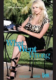 What Went Wrong (stormy Daniels) (162311.20)