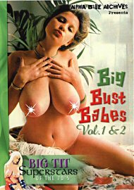 Big Bust Babes Vol. 1 And 2 (44882.7)