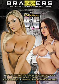 Pornstars Like It Big 4 (90545.10)