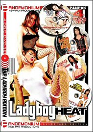 Ladyboy Heat (4 DVD Set) (90596.10)