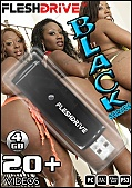 20+ Black Videos On 4gb usb FLESHDRIVE&8482;: vol. 1 (109019)